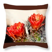 Cactus Bloom 033114m Throw Pillow