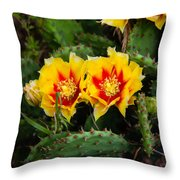 Cactus Bloom Throw Pillow