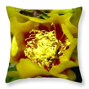 Cactus Blossom Open Throw Pillow