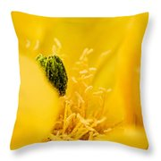Cactus Blossom Up Close And Personal Throw Pillow