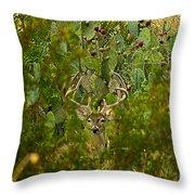 Cactus Buck Throw Pillow