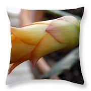 Cactus Bud Throw Pillow