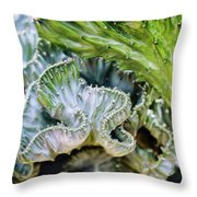 Cactus Curves Throw Pillow