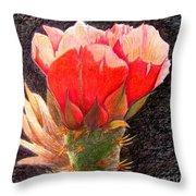 Cactus Cutie Throw Pillow
