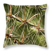 Cactus Diagonal Pattern Throw Pillow