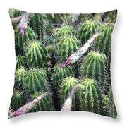 Cactus Drama Throw Pillow