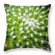 Cactus Feathers Throw Pillow