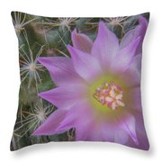 Cactus Flower #2 Throw Pillow