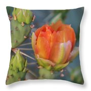 Cactus Flower And Buds Throw Pillow