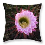 Cactus Flower Arizona 1 Throw Pillow