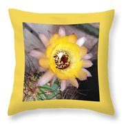 Cactus Flower Lobivia Throw Pillow