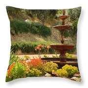 Cactus Fountain Throw Pillow