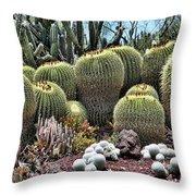 Cactus Galore  Throw Pillow