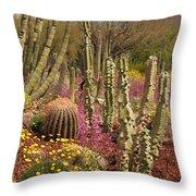 Cactus Garden II Throw Pillow
