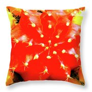 Cactus Graft Throw Pillow