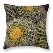 Cactus Hay Throw Pillow