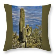 Cactus Home Throw Pillow