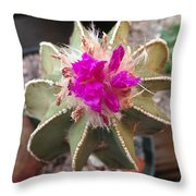 Cactus In Flower Throw Pillow