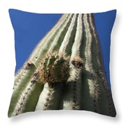 Cactus In The Sky  Throw Pillow