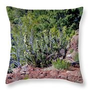 Cactus In The Wild Throw Pillow