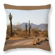 Cactus Line Dirt Road Throw Pillow