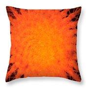 Cactus Nr3  Throw Pillow