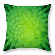Cactus Nr4 Throw Pillow