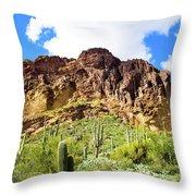 Cactus On The Mountainside Throw Pillow