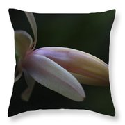 Cactus Peach Throw Pillow