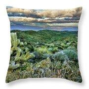 Cactus Rabbit Throw Pillow