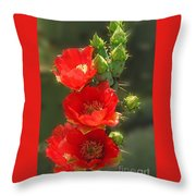 Cactus Red Beauty Throw Pillow