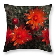Cactus Red Flowers Throw Pillow