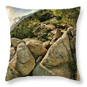 Cactus Rock Throw Pillow