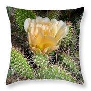 Cactus Rose Throw Pillow
