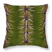 Cactus Spines Throw Pillow