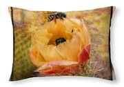 Cactus Spring Beauty W Frame Throw Pillow