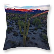 Cactus Sun Beam Throw Pillow