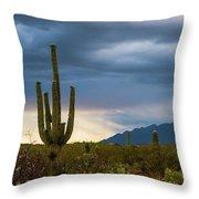 Cactus Sunset Saguaro National Park Arizona Throw Pillow