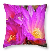 Cactus-thelocactus Macdowellii Throw Pillow