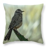Cactus Wren 0295 Throw Pillow
