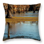 Caddo Lake 2016 Throw Pillow