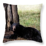 Cades Cove Bear Throw Pillow