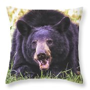 Cades Cove Black Bear Throw Pillow