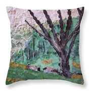 Cades Cove Meadow Throw Pillow