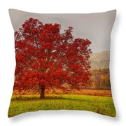Cades Tree After The Rain Throw Pillow