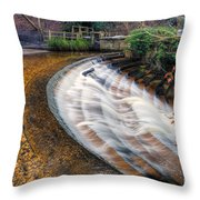 Caeau Weir Throw Pillow