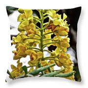 Caesalpinia Cacalaco In Huntington Desert  Gardens In San Marino-california  Throw Pillow