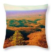Caesars Head State Park Throw Pillow