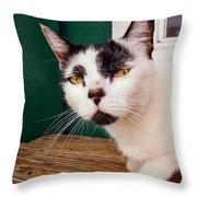 Cafe Cat  Throw Pillow