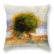 Cagnes Landscape 1910 Throw Pillow